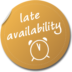 late-availability.png
